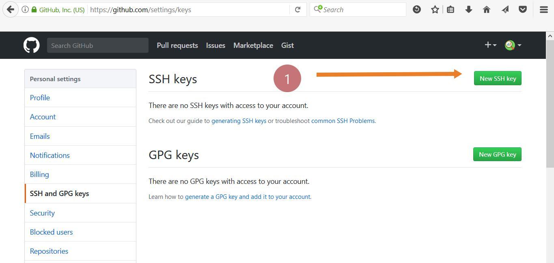 Adding SSH Keys to GitHub Account