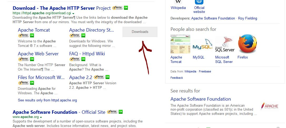 Apache_Server_Bing_Result