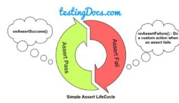 AssertLifeCycle