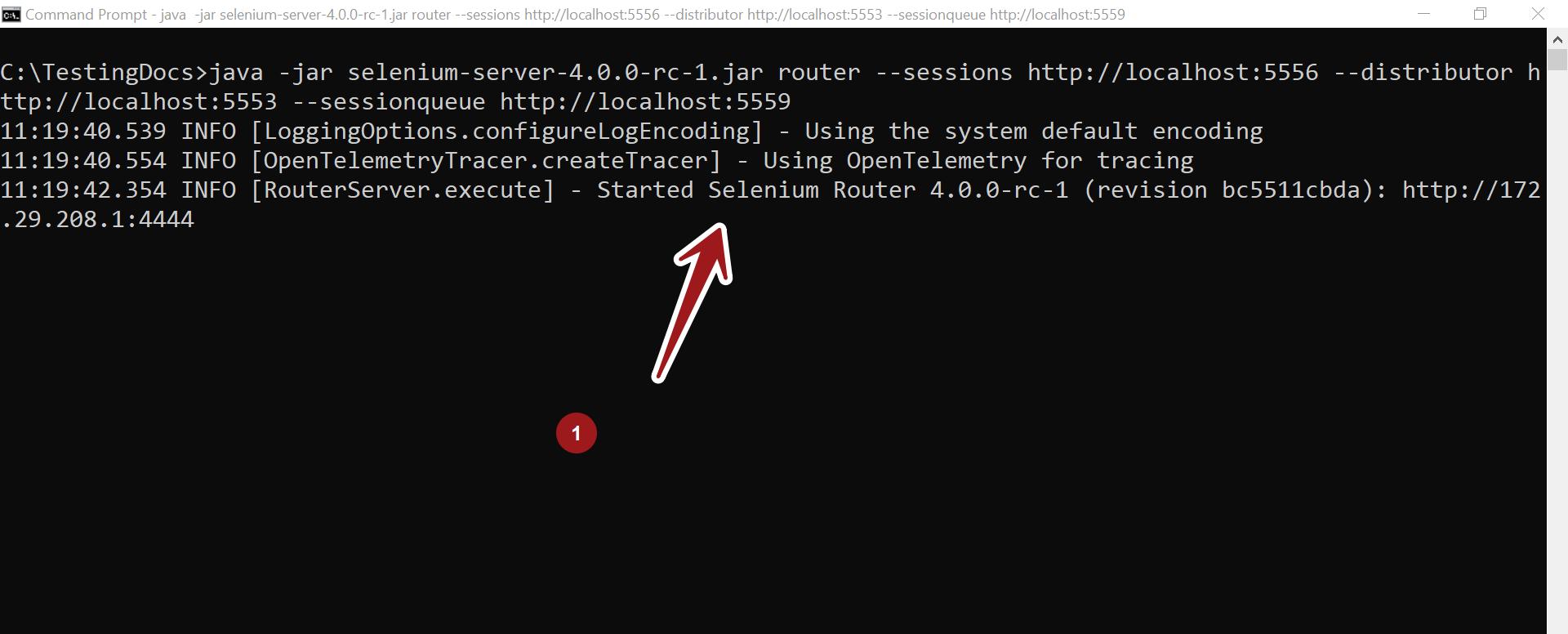 Selenium Router TestingDocs