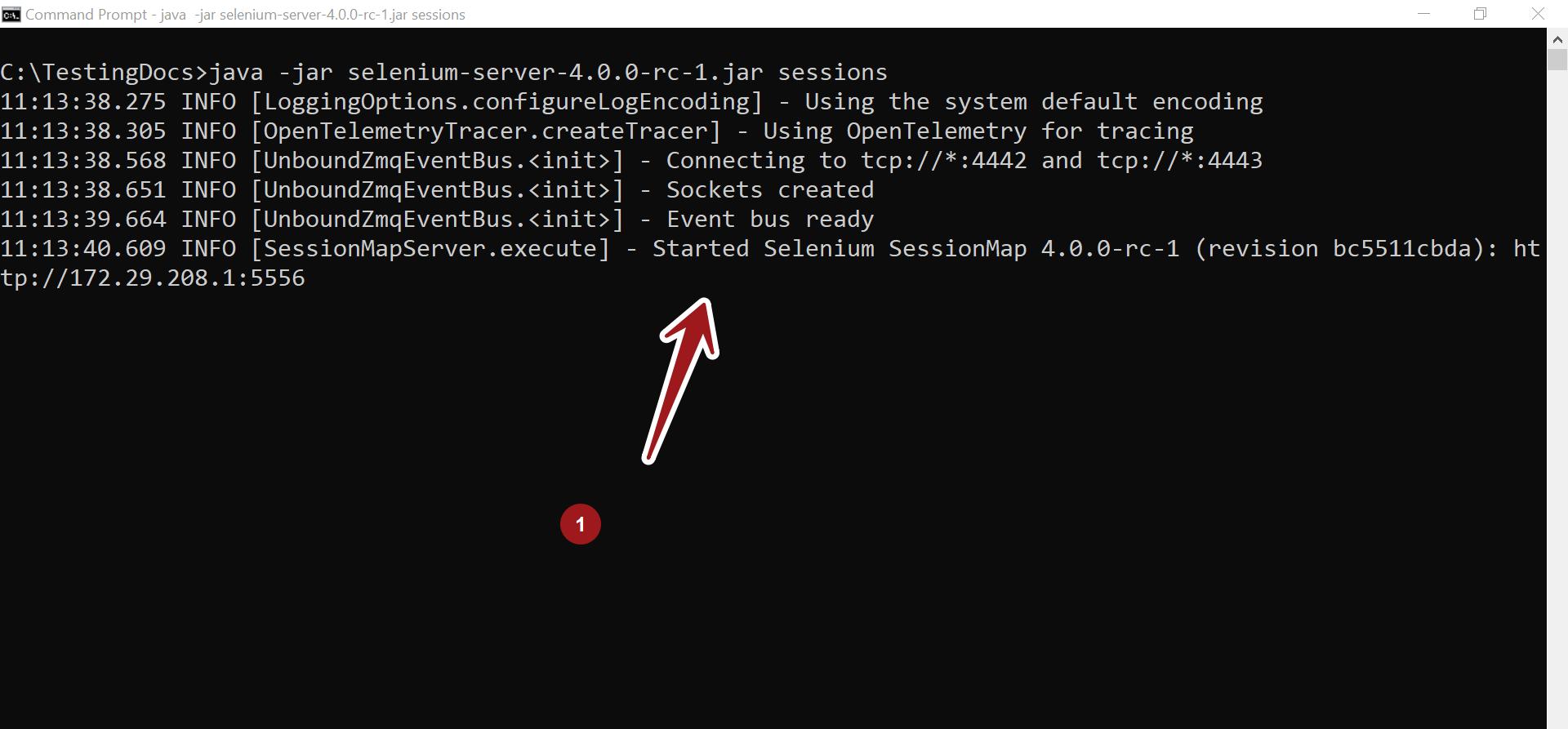 Selenium SessionMap