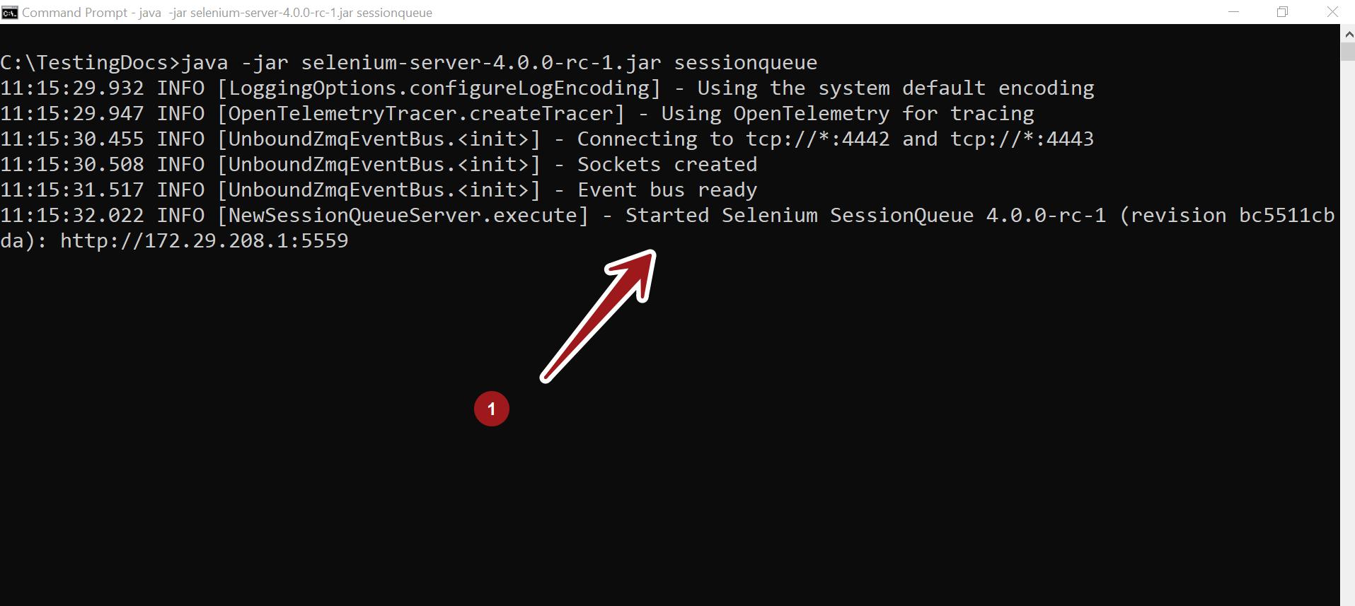 Selenium SessionQueue TestingDocs
