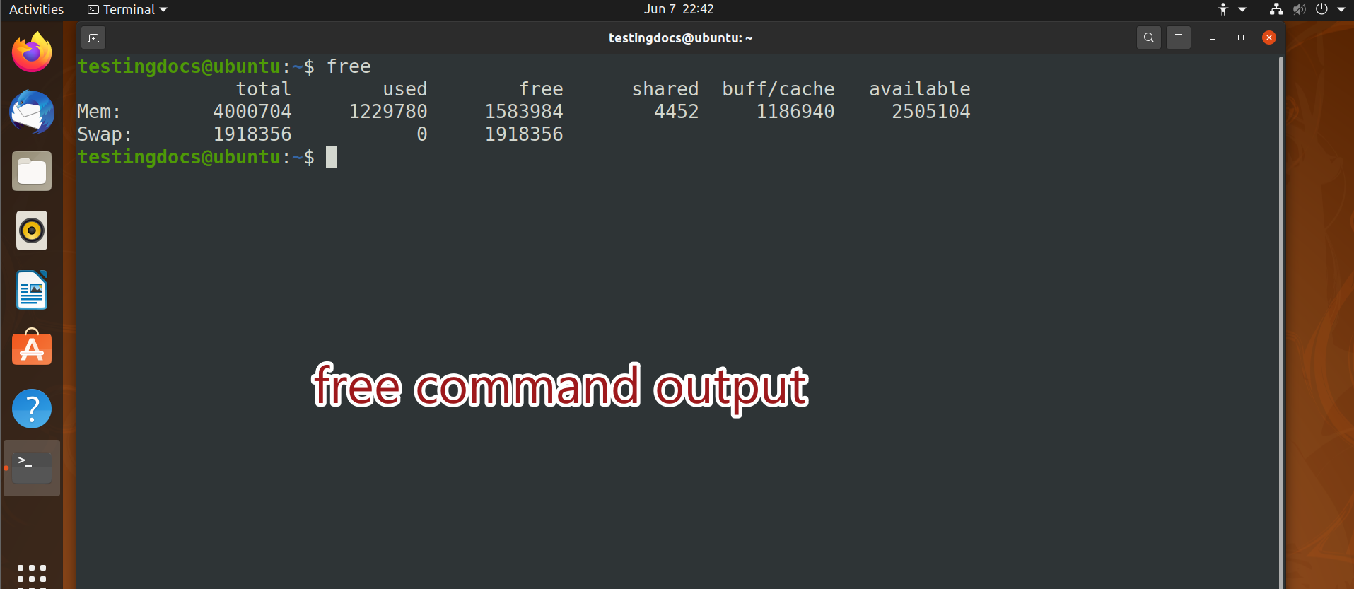 free command output
