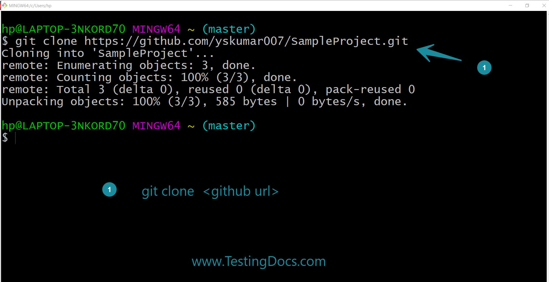 git clone existing repository