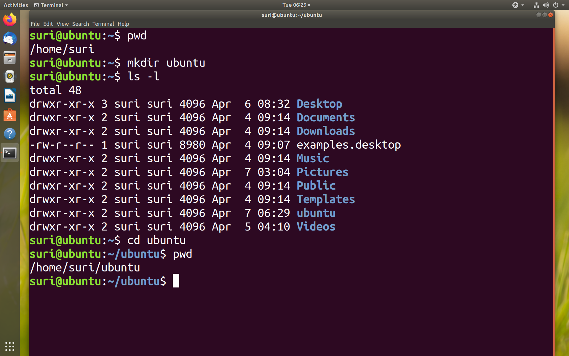Common File Commands in Linux